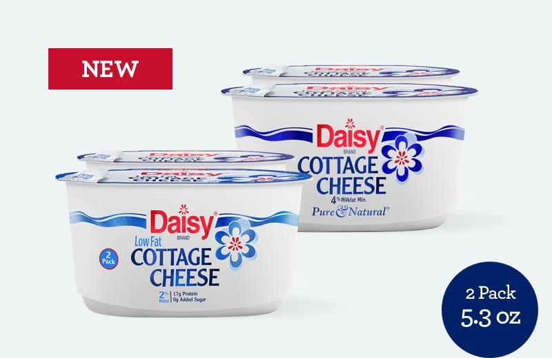 New Daisy Cottage Cheese Regular and Light 5.03 oz two pack